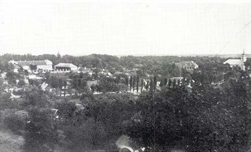 Pánd látképe az 1920-as években. A kép jobb oldalán a református templom, mellette az iskola, a bal felső részben pedig a Patay kastély épülete látható