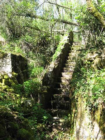 A vízmosás magasabb részébe vezető lépcsősor