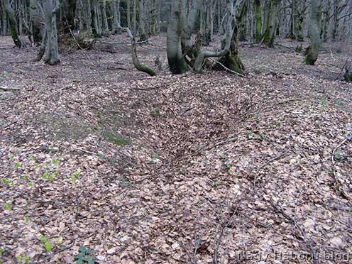 Egykori bunker maradványa