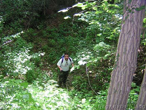 Stencinger Norbert már a dolina alján, a fotó a dolinába ereszkedés közben, annak az oldalából készült