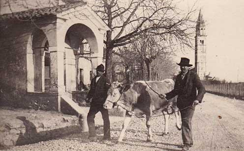 Medea, 1917, fogadalmi kápolna a polgári temető mellett