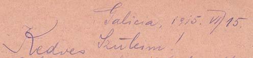 Tintaceruzával írt tábori levelezőlap részlete