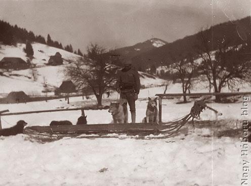 Kutyák az osztrák-magyar hadseregben az orosz fronton