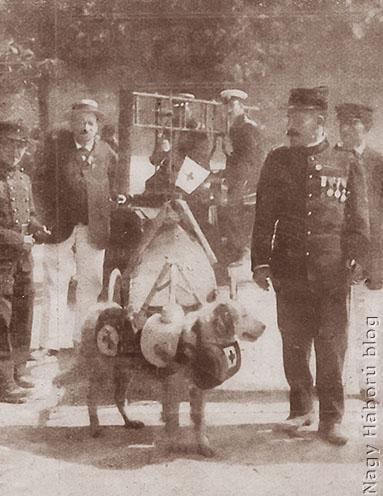 Svájci vöröskeresztes katona és kutyája
