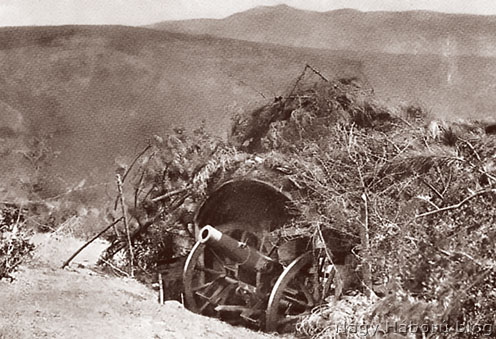 Leplezett hegyi ágyú