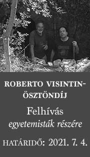 Roberto Visintin-ösztöndíj