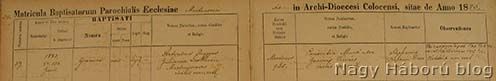 Faggyas János és Papp Julianna házasságkötési anyakönyvi bejegyzése a martonosi római katolikus plébánia házasságkötési anyakönyvében