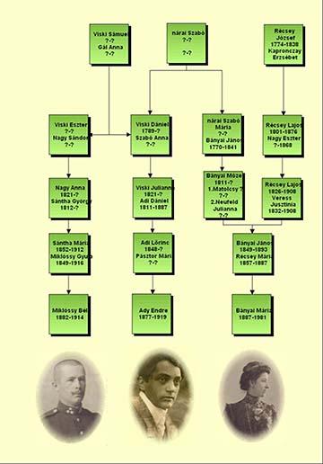 A Miklóssyak és Ady rokoni kapcsolatát bemutató családfa. Készítette: Miklóssy Éva Mária