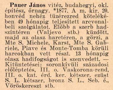 Budahegyi Pauer János hadiútja