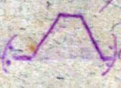 kókay 25