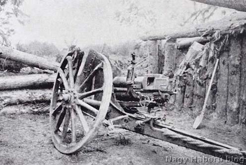 Az 1. üteg olykai erdőben 1916. február 11-én összelőtt egyik ágyúja