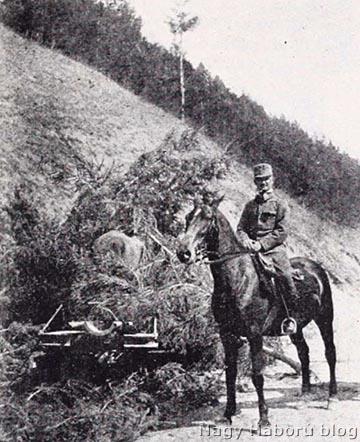 A tüzérezred parancsnoka, Naményi Konc Viktor még őrnagyként a Tölgyesi-szorosban, mellette egy leplezett 30 és feles mozsár