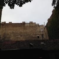 Óda a budapesti tűzfalakhoz, kéményekhez és háztetőkhöz