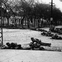 Somogyiak a Délvidéken II. (1941) - Utcai harcok Zomborban