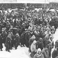 A doni harctérről a kaukázusi hadifogolytábor felé