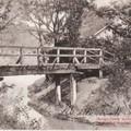 A Bunyitay – liget, amely egykor sziget volt