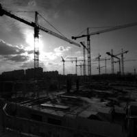 14 cranes