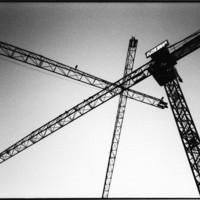 Cranes crossing