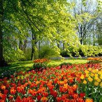 Az első szép tavaszi hétvége