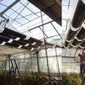 Fotovoltaikus üvegházak