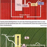 Organikus napelemek: a jövő technológiái