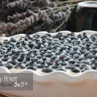 Száznegyvenhatodik nap: Vaníliakrémes pite, áfonyával