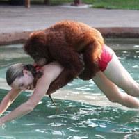 Az orángután szeret úszni