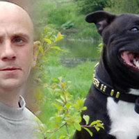 Kiengedték az előzetes letartóztatásból, hogy gondját viselje a kutyájának