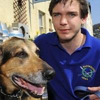Átaludta a rablást a pábot őrző kutya