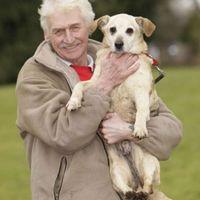 A világ legöregebb kutyája rendszeresen jár a pábba