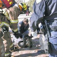 Pitonokat mentettek ki a tűzből a tűzoltók