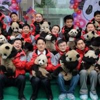 A kis pandák első napja az óvodában