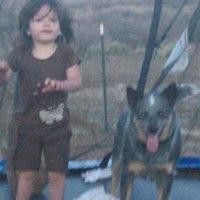 Kutya mentette meg az elveszett kislányt a kihűléstől