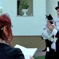 Egy német postás feleségül vette saját macskáját
