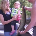 10 kilós harcsát fogott ki egy két éves kislány