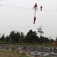 3 éves akrobata kislány egy kínai állatkertben
