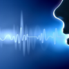 Beszédfelismerés magyarul