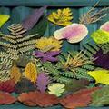 Természet ihlette színek