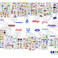 Ezek a márkák uralják a boltokat