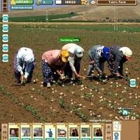 Farmville a valóságban