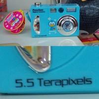 5.5 TERRApixel