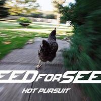 Need for speed: magyar verzió