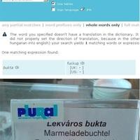 Miért ne használj online fordítót??