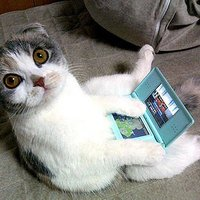 Neked már van Nintendo 3DS-ed?