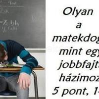 Matekdoga