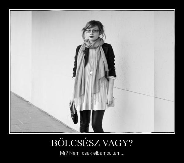 bolcseszvag_1359594785.jpg_600x532