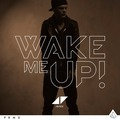 Avicii ft. Aloe Blacc - Wake Me Up!