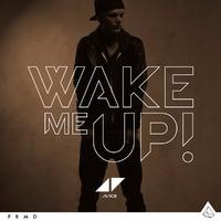 Avicii ft. Aloe Blacc - Wake Me Up!