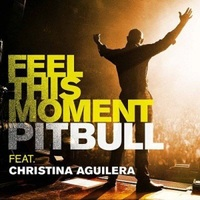Pitbull ft. Christina Aguilera - Feel This Moment