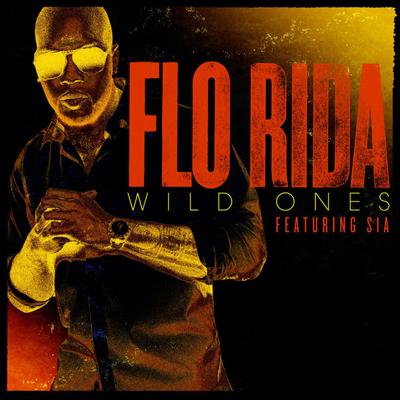 Flo_Rida_Wild_Ones.jpg
